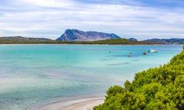 在鲜绿色海岸的海滩在圣特奥多罗附近在撒丁岛 免版税库存照片
