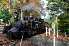 在鲜绿色湖的喘气的比利蒸汽火车 免版税库存图片