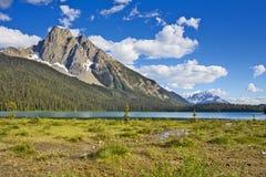 在鲜绿色湖的山风景 免版税库存照片