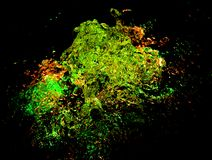 在鲜绿色的光的水飞溅 库存照片