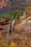 在鲜绿色水池的瀑布在锡安国家公园 免版税库存图片