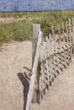 在鳕鱼角的海滩 免版税库存照片