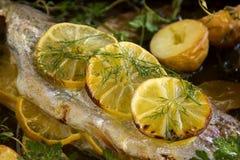 在鳟鱼内圆角的柠檬 免版税库存照片