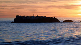 在鸟岩石的日落在拉古纳海滩的,加利福尼亚海斯勒公园下 免版税库存图片