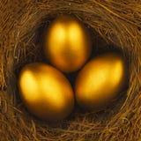 在鸟巢的三个金黄鸡蛋 库存图片