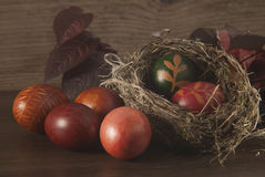 在鸟的巢的复活节彩蛋 免版税库存图片