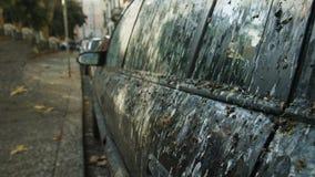 在鸟粪便盖的汽车 免版税库存照片