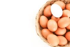 在鸡中的鸭子鸡蛋在一个木篮子-接近怂恿 库存图片