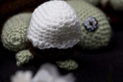 在鸡蛋的乌龟 图库摄影