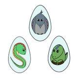 在鸡蛋的动物 免版税库存照片