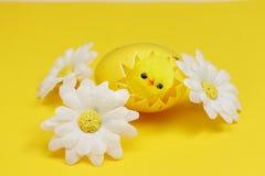 在鸡蛋的复活节鸡 免版税图库摄影