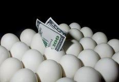 在鸡蛋的美元 库存照片
