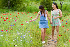 在鸦片花田的女孩步行 免版税库存图片