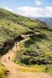 在鸦片野花期间,游人和徒步旅行者沿步行者峡谷足迹走 库存照片
