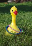 在鸭子,孩子的比赛的圆环抛 免版税图库摄影