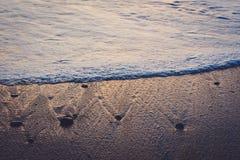 在鸽子点附近的波浪 免版税库存照片
