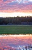 在鹈鹕小河的桃红色日出cloudscape在黄石国家公园在怀俄明 免版税库存图片