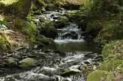 在鹰Combe的小河 库存照片