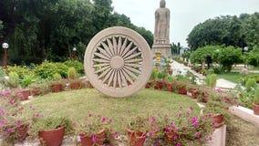 在鹿野苑瓦腊纳西的人为Ashok chakra 库存图片