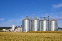 在麦地的四个银色筒仓 免版税图库摄影