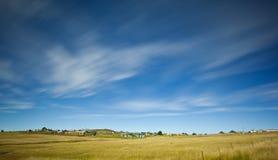 在麦地的大天空 免版税库存图片