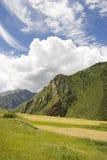 在麦子之下的蓝色域天空 免版税库存图片
