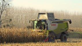 在麦子麦地的组合收获 影视素材