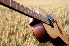 在麦田的声学吉他 免版税库存图片