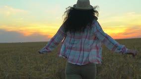 在麦田的妇女旅游赛跑在夏天日落 徒步旅行者帽子的旅客妇女有hikking本质上的背包的 女孩 股票视频