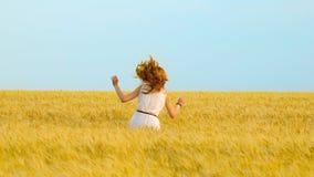 在麦田的年轻愉快的红发妇女跳跃和赛跑在慢动作 股票录像
