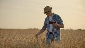 在麦田的年轻男性农夫藏品片剂 股票录像