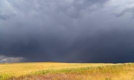 在麦田的风暴风暴 免版税库存图片