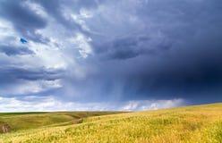 在麦田的风暴风暴 库存图片
