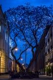 在黄昏的相当街道在街市墨西哥城,墨西哥 免版税库存照片