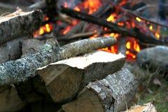 在黄昏的篝火 库存照片