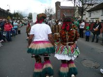 在黄柏Carigaline 2012年3月17日的圣帕特里克天 库存照片