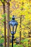 在黄绿秋天叶子背景的路灯到底  免版税库存照片