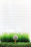 在黄色发球区域和空白背景的高尔夫球 库存图片