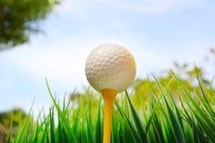 在黄色发球区域和蓝天背景的高尔夫球 免版税库存图片