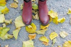 在黄色叶子,灰色背景的女性黑暗的桃红色鞋子 免版税库存照片