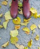 在黄色叶子,灰色背景的女性黑暗的桃红色鞋子 免版税库存图片