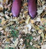 在黄色叶子,草背景的女性黑暗的桃红色鞋子 免版税库存图片