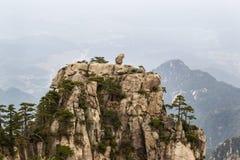 在黄色山的自然猴子石头雕象 免版税库存图片