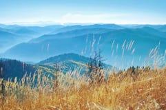 在黄色干草报道的发烟性山脉小山  库存照片