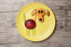 在黄色板材和木板的滑稽的果子狗 图库摄影