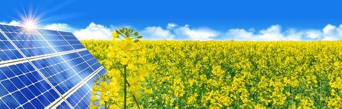 在黄色油菜领域的太阳电源的太阳能 库存照片