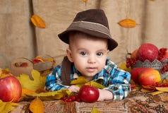 在黄色秋叶、苹果、南瓜和装饰,秋季的儿童谎言 库存图片