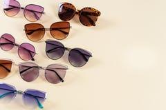 在黄色背景的不同的太阳镜 横幅蝶粉花瓢虫草坪夏天 复制空间 视觉商店 库存图片