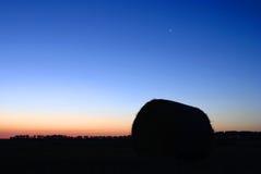 在黎明域麦子之上 库存照片