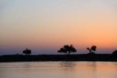 在黎明的河和结构树 库存图片